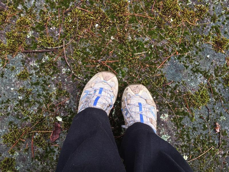 OldWalkingShoes6